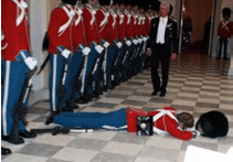 history-guards